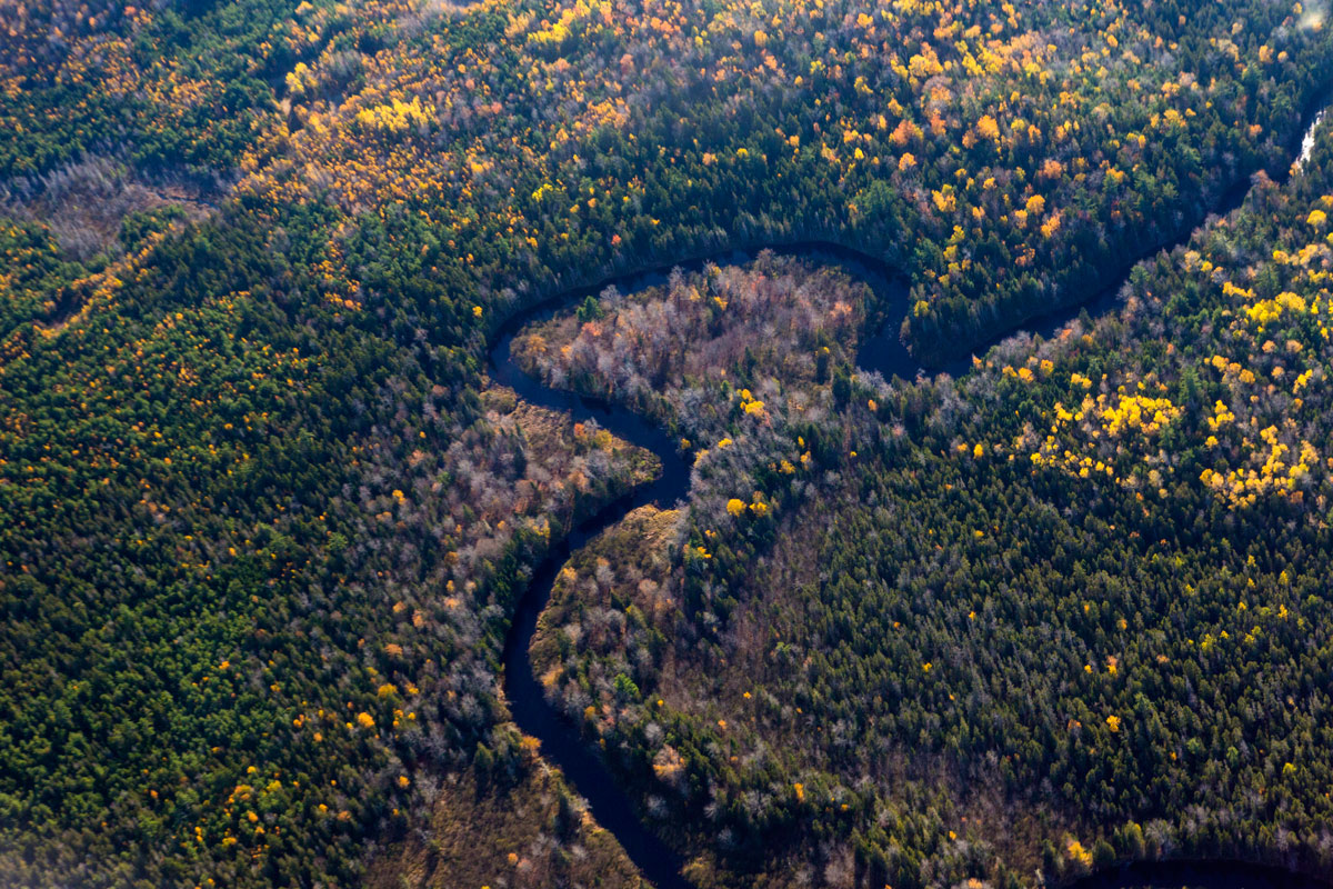 Downeast Maine forestland and river