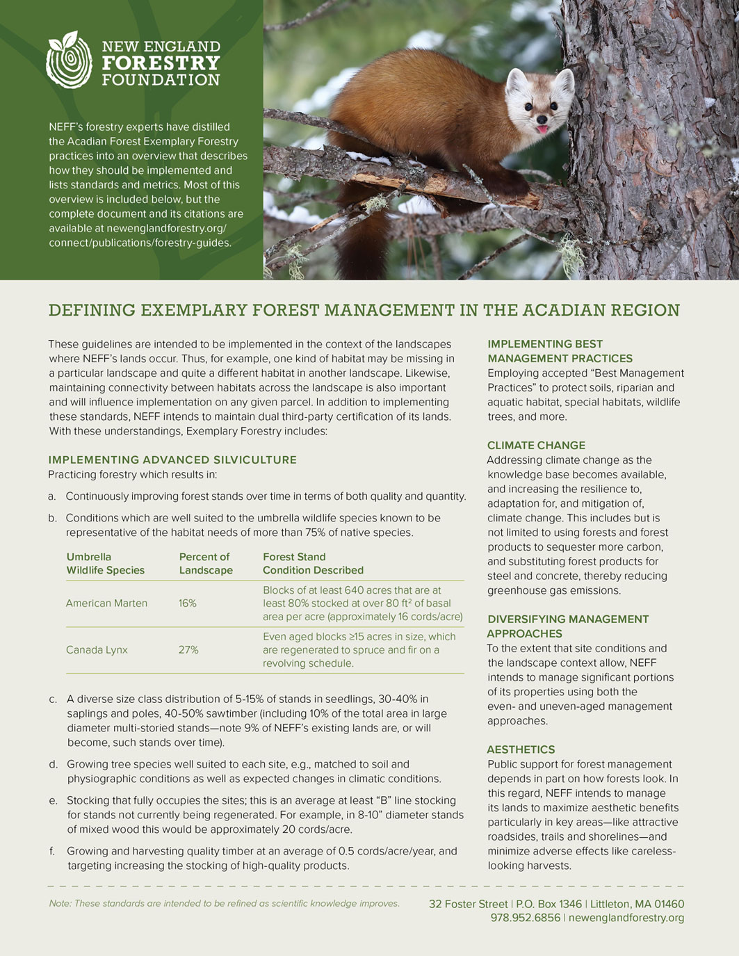 One-page handout that provides an overview of Exemplary Forestry practices